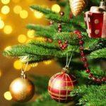 MESAJE de Crăciun fericit! Urări și felicitări pe care le poți trimite celor dragi | ocnamuresinfo.ro