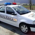 Un tânăr de 18 ani din Ocna Mureș s-a răsturnat cu mașina în afara carosabilului