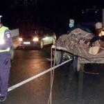 Căruță acroșată de un autoturism condus de un șofer beat, la Lunca Mureșului
