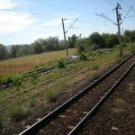 Un bărbat de 67 de ani din Decea a decedat după ce a fost lovit de tren