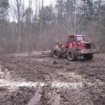 Prefectura Alba consideră că exploatarea forestieră de la Banța nu pune în pericol siguranţa cetăţenilor