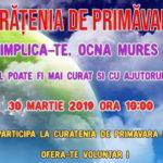 """Copiii de la Așezământul social """"Sfântul Mucenic Ciprian"""" din Ocna Mureș participă la campania de curățenie de primăvară"""
