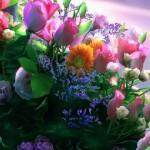 Obiceiuri, superstiţii și tradiții de Florii: Ramurile de salcie sunt așezate înainte de culcare sub pernele fetelor nemăritate | ocnamuresinfo.ro