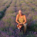 Un fermier din Ocna Mureș a renunţat la culturile tradiţionale pentru a-şi încerca norocul cu lavandă