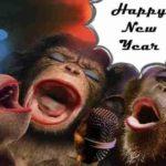 Mesaje de Anul Nou 2019 haioase. URARI și FELICITARI amuzante pe care le puteți trimite prietenilor | ocnamuresinfo.ro