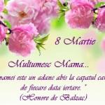 MESAJE de ziua MAMEI, 8 MARTIE 2015. Ce urări, SMS-uri şi felicitări emoţionante îi poţi transmite mamei tale | ocnamuresinfo.ro