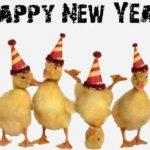 MESAJE SMS de Anul Nou 2018 haioase. Urări și Felicitări amuzante pe care le puteți transmite celor dragi | ocnamuresinfo.ro
