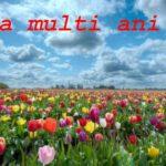 Nume de femei și bărbați care se sărbătoresc de Florii | ocnamureșinfo.ro