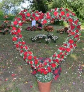 ziua rozelor Ciumbrud